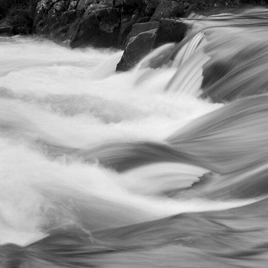 Rapid rapids by Tim Haynes