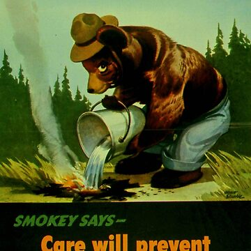 Prevent forest fires poster by franceslewis