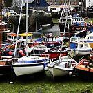 Cornish Harbour by loz788