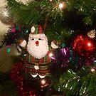 Happy Santa! by Carol Bleasdale