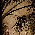 Vintage Palm by Susanne Van Hulst