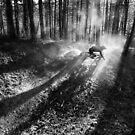Ride in lines by Andrej Grznár