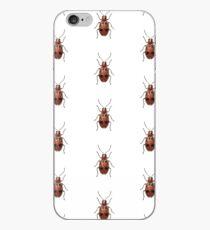 Malacorhinus biplagiatus iPhone Case