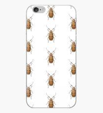 Malacorhinus antennatus iPhone Case