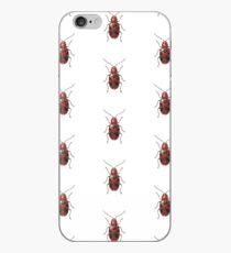 Malacorhinus irregularis iPhone Case