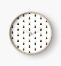 Neobrotica cavifrons Clock