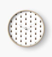 Hecataeus nigricollis Clock