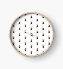 Malacorhinus biplagiatus Clock