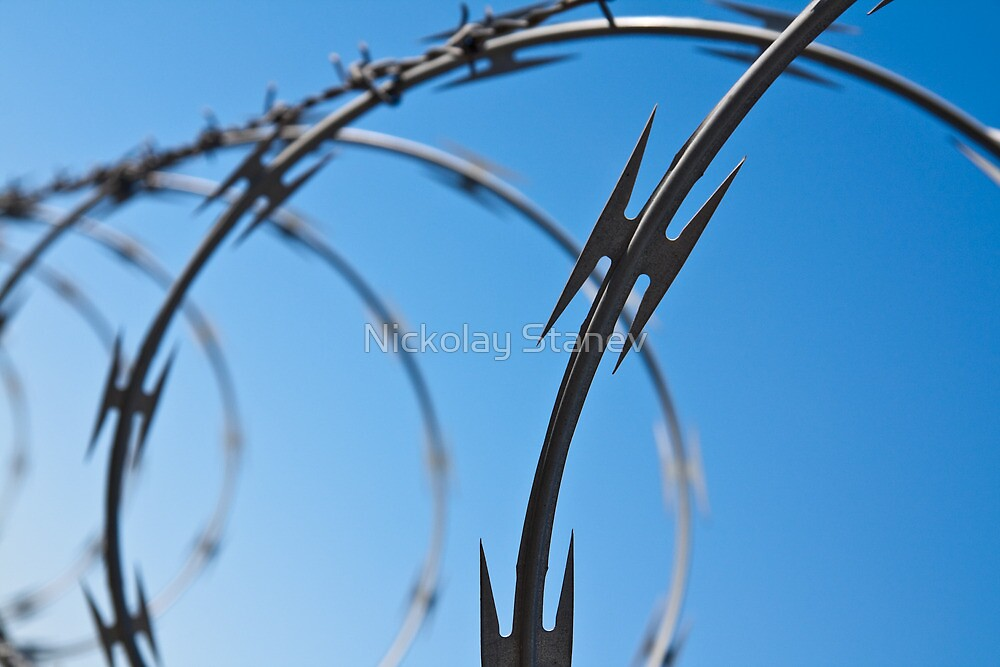 Barbed Wire Abstract by Nickolay Stanev