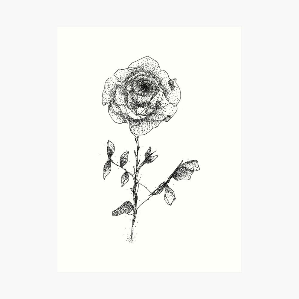 One Line Rose Kunstdruck