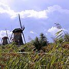 2 Dutch windmills at Kinderdijk by aapshop