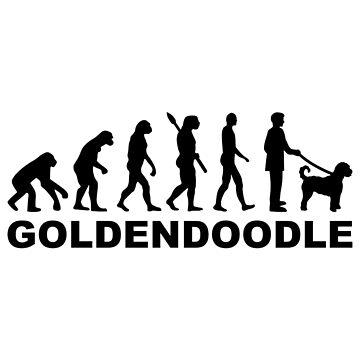 Goldendoodle evolution by Designzz