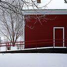 The Red Building by Brian Gaynor