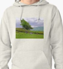 Weather report Pullover Hoodie