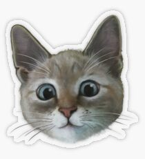 happy cat Transparent Sticker