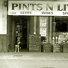 Pints 'N' Litres by Sinead Costello