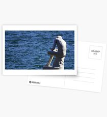 Boy with a thorn Postcards