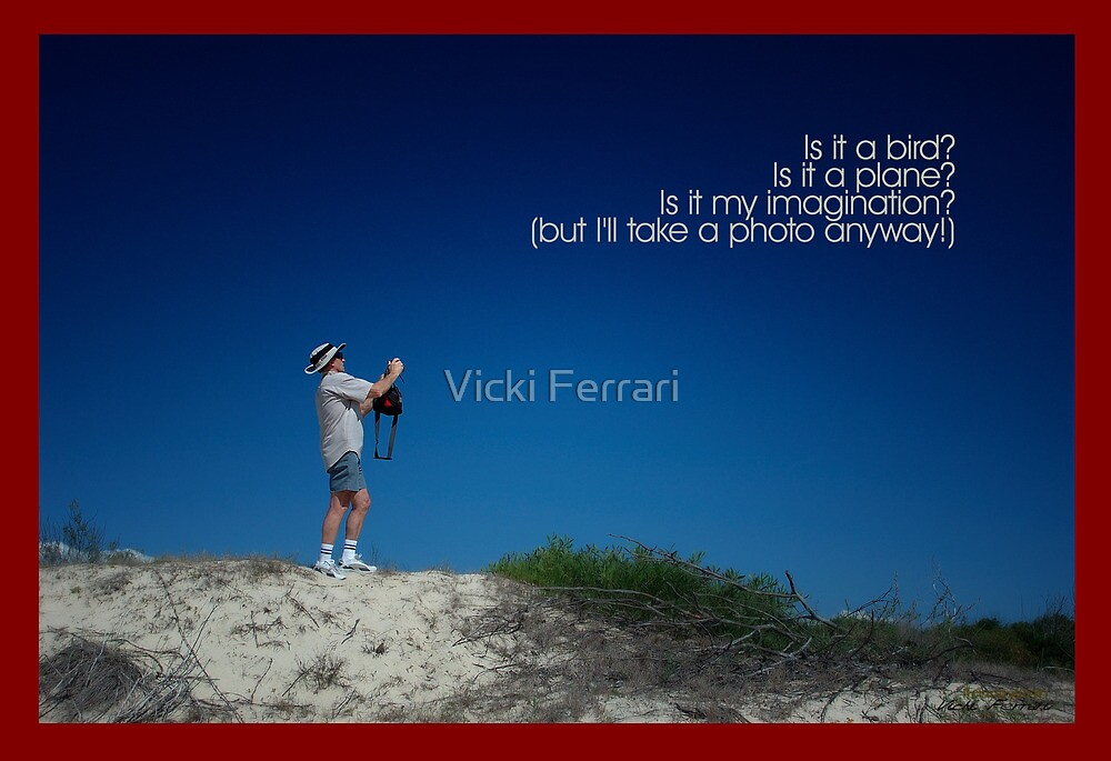 Is it a bird, is it a plane... © Vicki Ferrari Photography by Vicki Ferrari