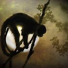 Moon Monkey by Carol Bleasdale