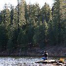 Fishing on Wood's Canyon Lake by Jennifer Chan