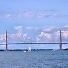 The Arthur Ravenel Jr. Bridge by Dawne Dunton