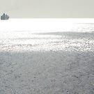 Sailing the Silver Sea by Jennifer Chan