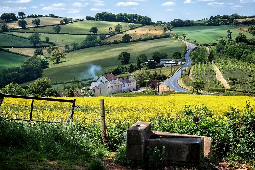 Midsummer Smoke In An English Valley by Michael Carter