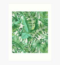 Green tropical leaves II Kunstdruck
