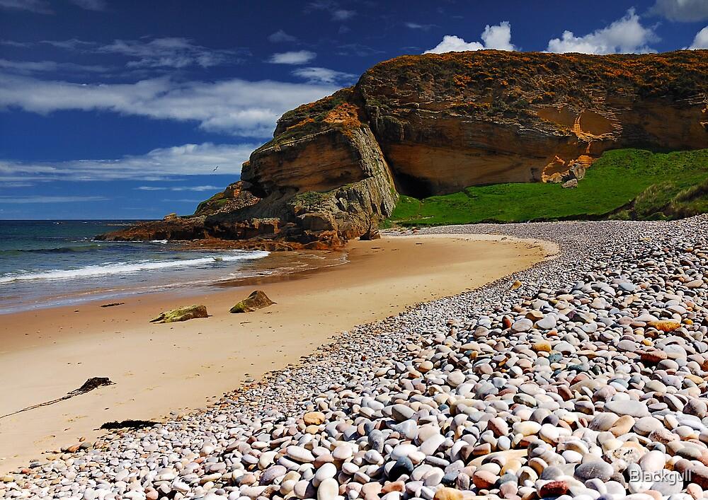 Cove Bay by Blackgull