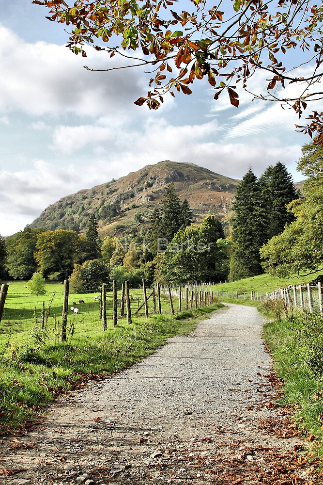 """Coffin Route"" towards Rydal Hall, Lake District, UK by Nick Barker"