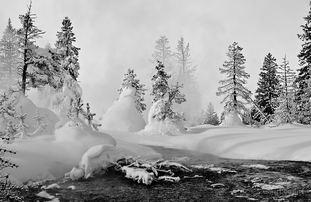 Yellowstone in Winter by Gary Lengyel