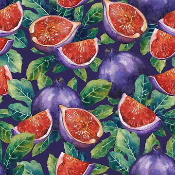 Watercolor fig fruits and leaves by Glazkova