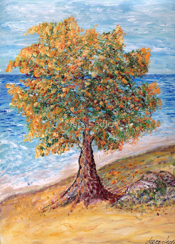 Life Tree by Mary Sedici