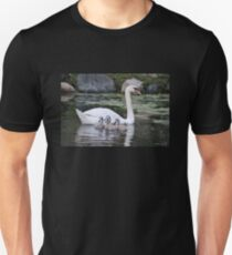 Mute Swan and her Cygnets T-Shirt