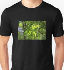 Light Playing in the Leaves T-Shirt