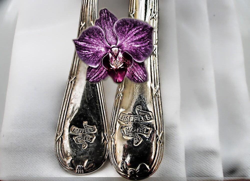 Silverware by Donna Ingham