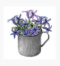 Hyacinth flowers in a mug Photographic Print