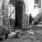 Laureana Cilento: door with cat and jacket by Giuseppe Cocco