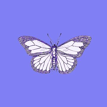 Butterfly Blues by MAMMAJAMMA