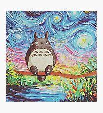 Totoro 3 Photographic Print