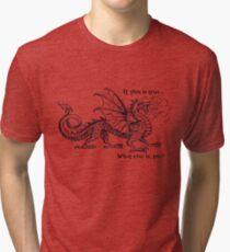 Improv - If this is true dragon Tri-blend T-Shirt