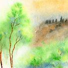 Misty by Anil Nene