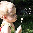 Blowing Dandelions by S S