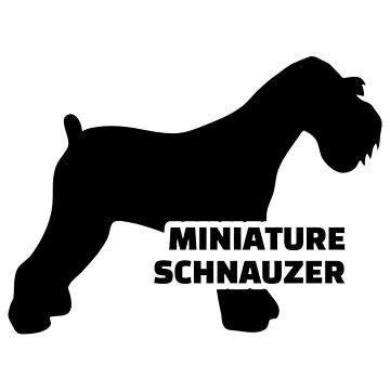 Miniature Schnauzer by Designzz