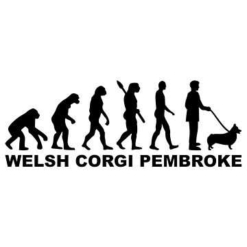 Welsh Corgi Pembroke evolution by Designzz