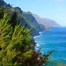Kalalau Trail Kauai by kevin smith  skystudiohawaii