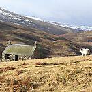 Cottage, Glen Quaich. by YvonneHair