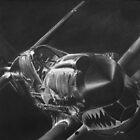 Warhawk by John Reardon