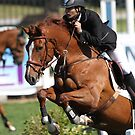 Show Jumping by Jo McGowan