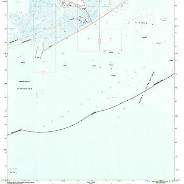 USGS TOPO Map Louisiana LA Belle Pass 331431 1994 24000 by wetdryvac